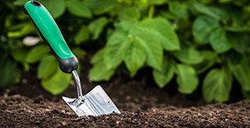 Gartenbau Nördlingen, Schwarz & Müßle, Gartenpflege