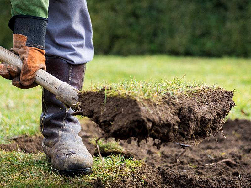 Rasenarbeiten Nördlingen, Gartenbau Nördlingen, Schwarz & Müßle